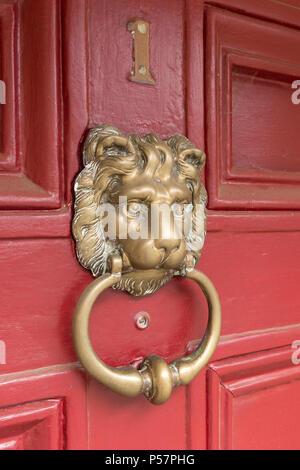 Old lions head cast brass metal door knocker on red painted wood panelled house front door, England, UK - Stock Image
