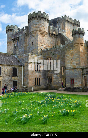 The courtyard to the rear of Belsay Castle, a 14th century peel tower, and later domestic buildings, in Northumberland, England, UK - Stock Image