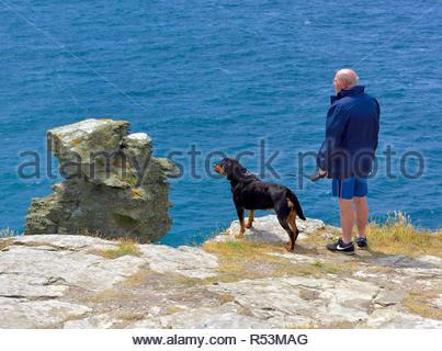 A man walking his rottweiler dog on the Tintagel island peninsula,Cornwall,England,UK - Stock Image