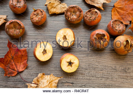 Medlar fruit cut in half with an autumn themed background - Stock Image