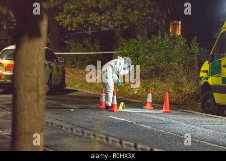 Crowthorne, United Kingdom. 05 November 2018. Thames Valley Police officers and the South Central Ambulance Service were called to Nine Mile Ride in Crowthorne in the Bracknell Forest district of south-eastern Berkshire shortly after 14:00GMT after an injured man was found in the road. Emergency services provided medical treatment to the man however he died at the scene. Credit: Peter Manning/Alamy Live News Credit: Peter Manning/Alamy Live News - Stock Image