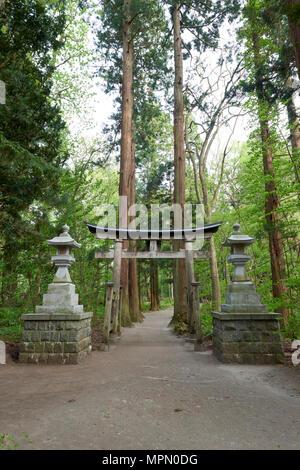 Tori gates at leading to Towada Shrine, in the prefecture of Aomori, Japan. - Stock Image