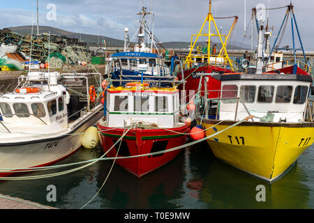 Fishing boats in Portmagee Harbour, County Kerry, Ireland - Stock Image