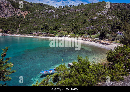 Limnonari Beach, Skopelos, Northern Sporades Greece. - Stock Image