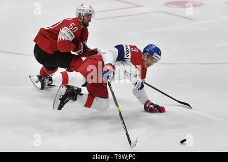 Bratislava, Slovakia. 21st May, 2019. L-R Tristan Scherwey (SUI) and David Sklenicka (CZE) in action during the match between Czech Republic and Switzerland within the 2019 IIHF World Championship in Bratislava, Slovakia, on May 21, 2019. Credit: Vit Simanek/CTK Photo/Alamy Live News - Stock Image