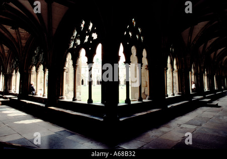 The cloisters Norwich Cathedral Norfolk England - Stock Image