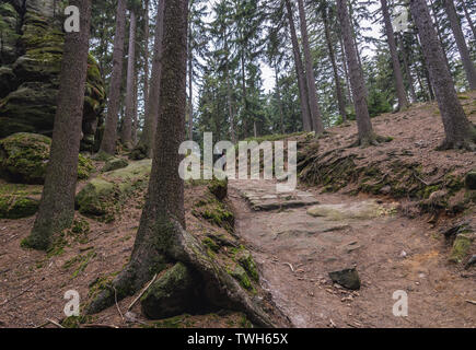 Ostas Nature Reserve in Table Mountains range in Czech Republic - Stock Image