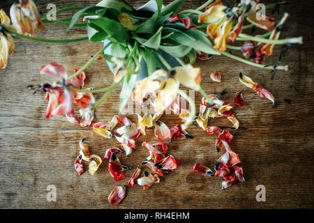 Dead flower petals falling from bouquet stems - Stock Image