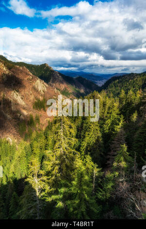 Panoramic landscape from Rhodopes mountain near Smolyan city, Bulgaria. - Stock Image