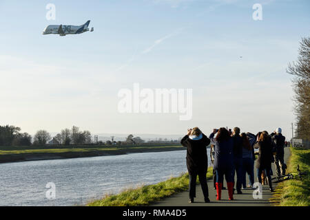 Broughton, Flintshire, UK. 14th February 2019. Crowds watch the new Airbus A330-743L transport plane known as the Airbus Beluga XL do a fly past at Hawarden Airport. The airport is adjacent to the Airbus factory on the outskirts of Chester and this is the first visit of the plane to the factory where it will remain until Saturday. The Beluga XL is designed to transport aircraft wings and has 30% more cargo capacity than the current Beluga. Credit: Andrew Paterson/Alamy Live News - Stock Image