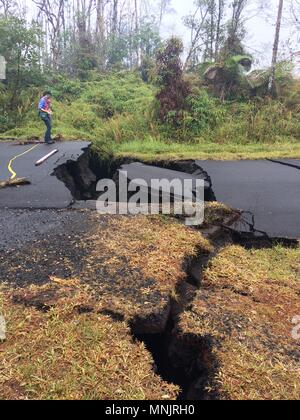 A USGS scientist views ground cracks along Nohea Street in Leilani Estates caused by the eruption of the Kilauea volcano May 17, 2018 in Pahoa, Hawaii. - Stock Image