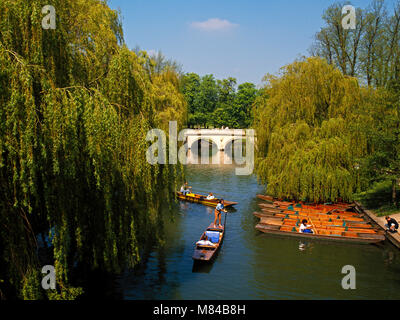 Punting on the Backs, Cambridge, England, UK - Stock Image