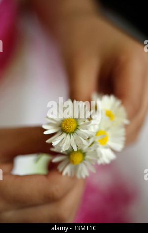 Five year old girl holds bunch of daisies - Stock Image