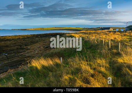 The coast at Scarfskerry, Caithness, Scotland, UK, Europe, EU, EEC - Stock Image