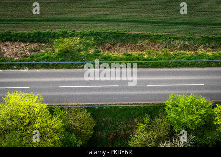 Asphalt road with white stripes seen from above with green trees - Stock Image