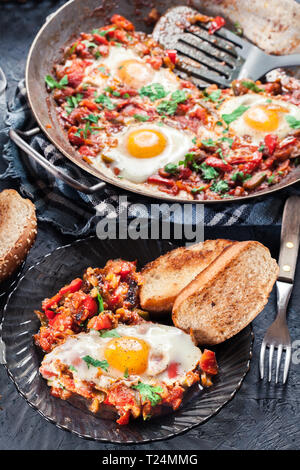 Portion of shakshuka on a plate. Middle eastern traditional dish with fried eggs, tomatoes, bell pepper, vegetables and herbs. - Stock Image