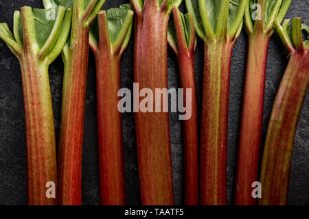 Rhubarb steams on dark background, close up view. - Stock Image