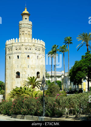 The Torre del Oro tower in Seville - Stock Image