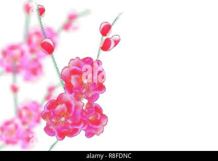 Branches with delicate pink flowers and buds. Sakura points. isolated on white background. Illustration - Stock Image