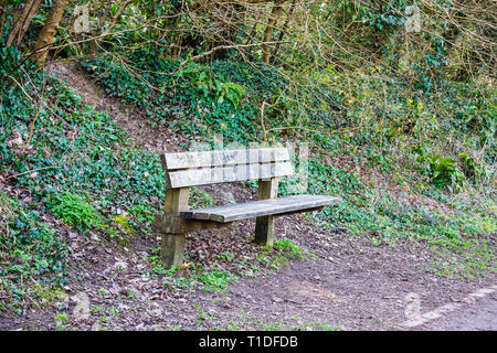 A seating bench made of wood with early spring growth and ivy on the bank behind and last years leaflitter on the floor next to a country path. - Stock Image