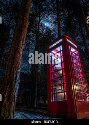 A red phone box lit up at night in a forest in England - Stock Image