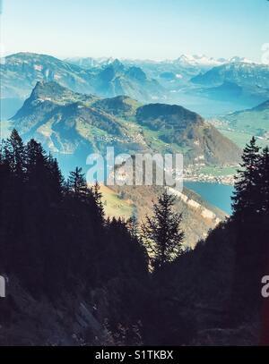 Alpine trees and mountain ranges - Stock Image