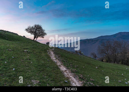 Beautiful view of idyllic mountain scenery with blooming meadows and mountain peaks on a beautiful sunny day with blue sky in springtime - Stock Image