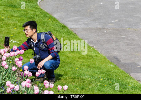 Bath, Somerset, UK. 19th Apr, 2019. With many parts of the UK expecting to experience very warm weather over the easter bank holiday period a man enjoying the warm sunshine is pictured as he takes a photo of a flower display in Parade Gardens. Credit: lynchpics/Alamy Live News - Stock Image