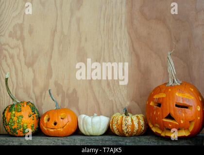 Large Halloween copy space with carved pumpkins and gourds at the bottom against wooden background in side view - Stock Image