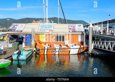 Marlin Marina Tours at Cairns Wharf, Far North Queensland, FNQ, QLD, Australia - Stock Image