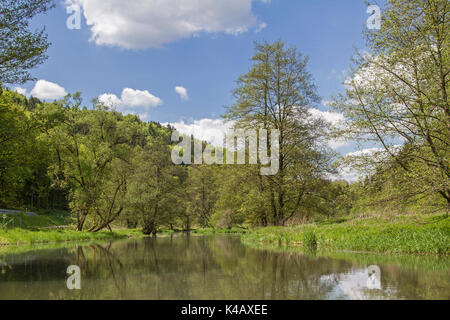 Idylically, The Black Laaber Winds Through A Beautiful Natural Landscape - Stock Image