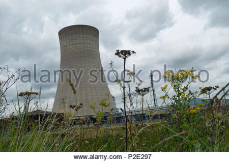 Cooling tower at large chemical works, UK - Stock Image