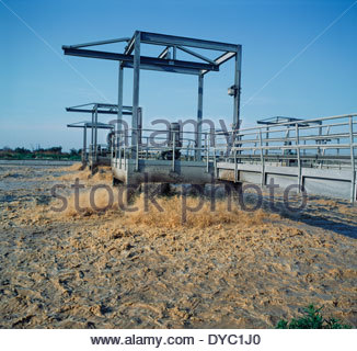 Treatment lagoon for wastewater from paper mill, North Kent - Stock Image