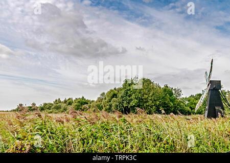 Fenland (Cambridgeshire, England) - Stock Image