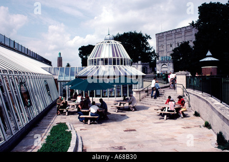Norwich Castle and Castle Mall Norfolk England - Stock Image
