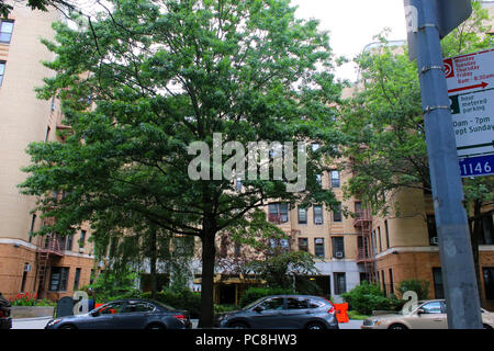 NEW YORK, NY - JULY 10: Art-deco prewar residential building at 20 Plaza Street East in Prospect Heights, Brooklyn on JUNE 10th, 2017 in New York, USA - Stock Image