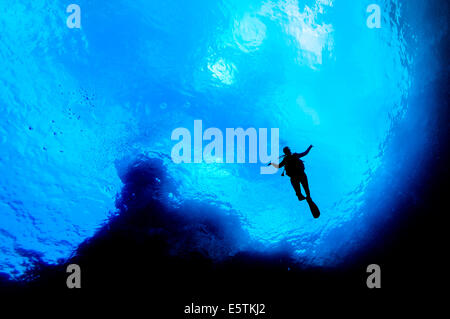silhouette of a young female diver near the surface and posing underwater against a steep limestone cliff and a - Stock Image