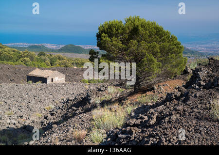 Old damaged abandoned building in lava field caused by volcanic eruption of Mount Etna active stratovolcano, Taormina, Sicily - Stock Image