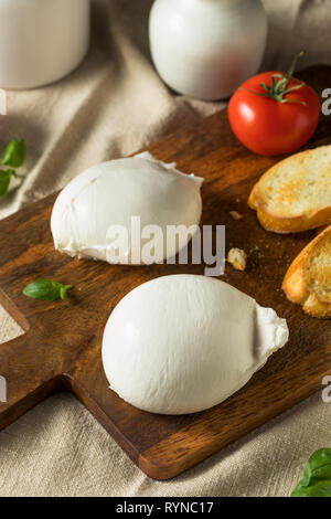 Homemade White Italian Burrata Cheese with Tomato and Basil - Stock Image