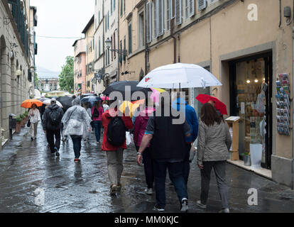 Group of tourists carrying umbrellas during rain in Lucca, Tuscany, Italy, Europe - Stock Image