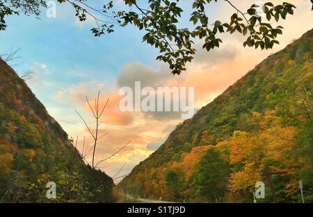 Fall season trees on mountain in Newyork, USA - Stock Image