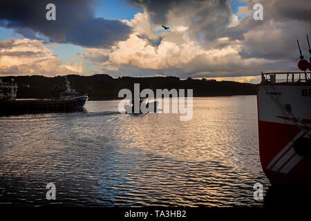 Fishing boats in the harbour at Killybegs, in County Donegal. It's the largest fishing port on the island of Ireland. - Stock Image
