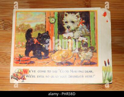Vintage Greeting Card showing farmyard scene with dog, cat, duck and chick - social history - Stock Image