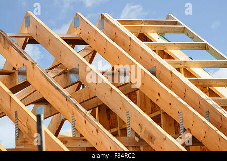 Standard timber framed building with close up on the roof trusses - Stock Image