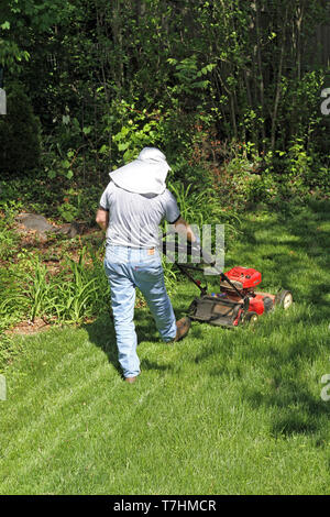 A man in a sun protective hat pushes a lawn mower in an endless attempt to tame the surrounding jungle of vegetation - Stock Image