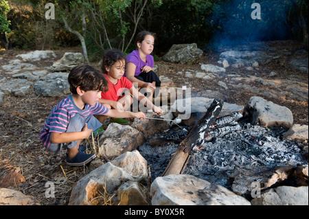 Three kids roasting marshmallows at a campfire - Stock Image
