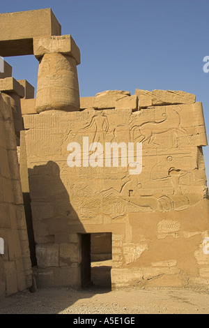 Stone Wall in the Temple of Karnak, Luxor, Egypt, Decorated with Hieroglyphics and Pictures of the Ancient Egyptian Kings of Upp - Stock Image