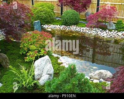 Traditional Japanese water garden with plants, shrubs, rocks and Acer and Maple trees - Stock Image