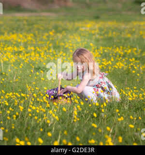 a 3 year old girl is picking yellow flowers in a basket - Stock Image