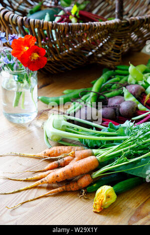 Harvest of fresh summer vegetables - Stock Image